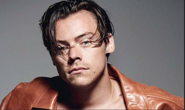 Harry styles net worth